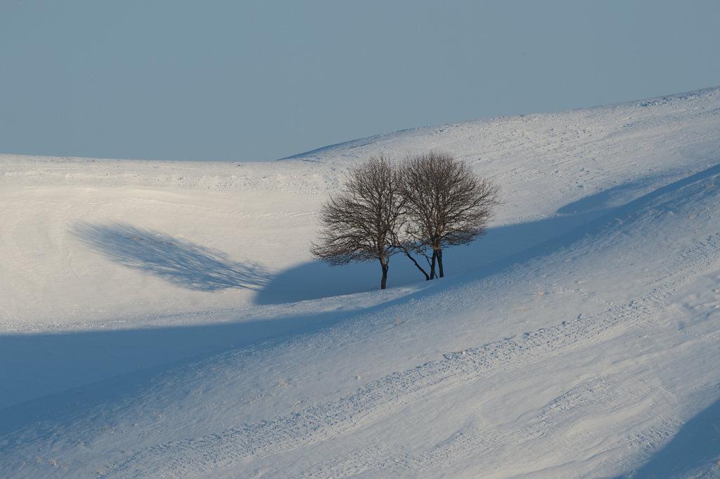 Hokkaido-02.jpg