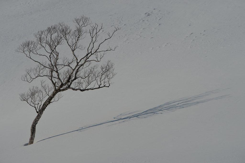 Hokkaido-07.jpg