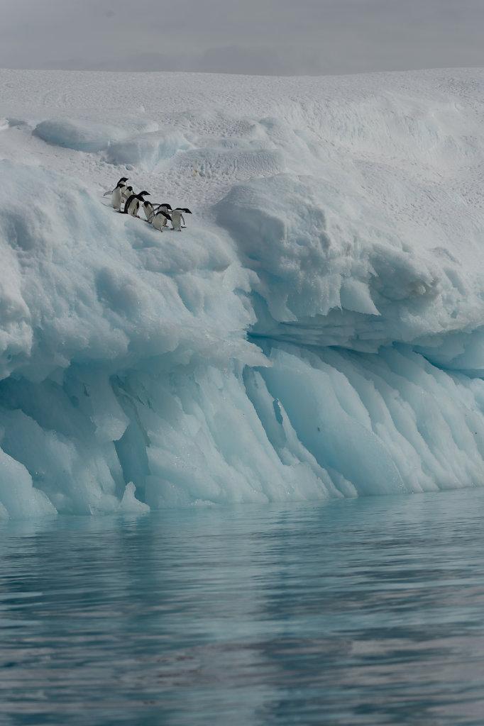 Antarctica13.jpg