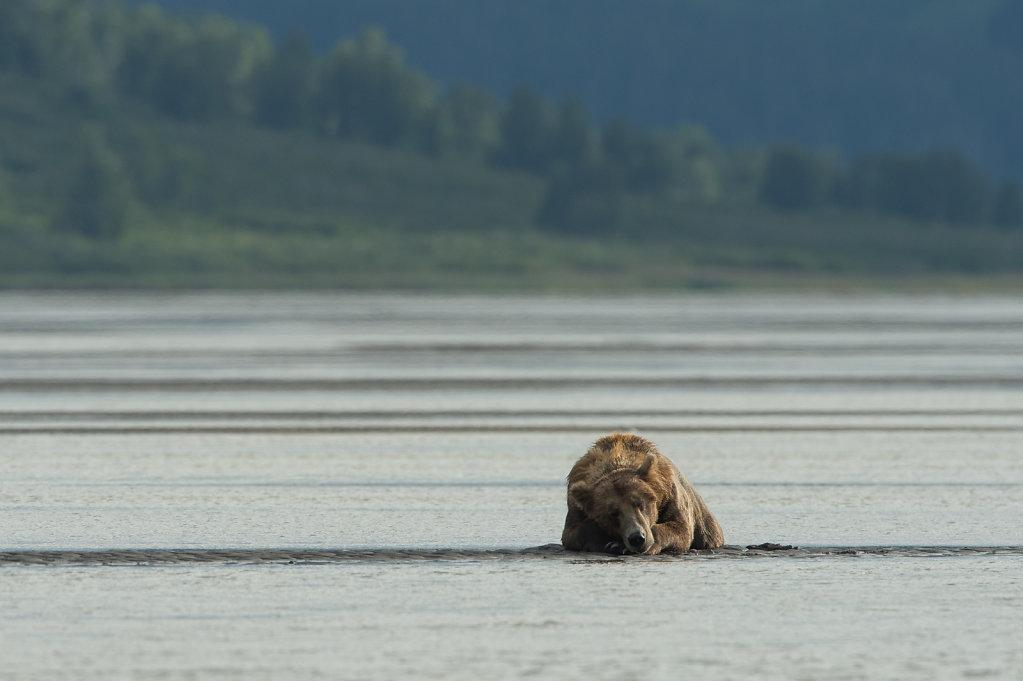 Alaska14-28.jpg