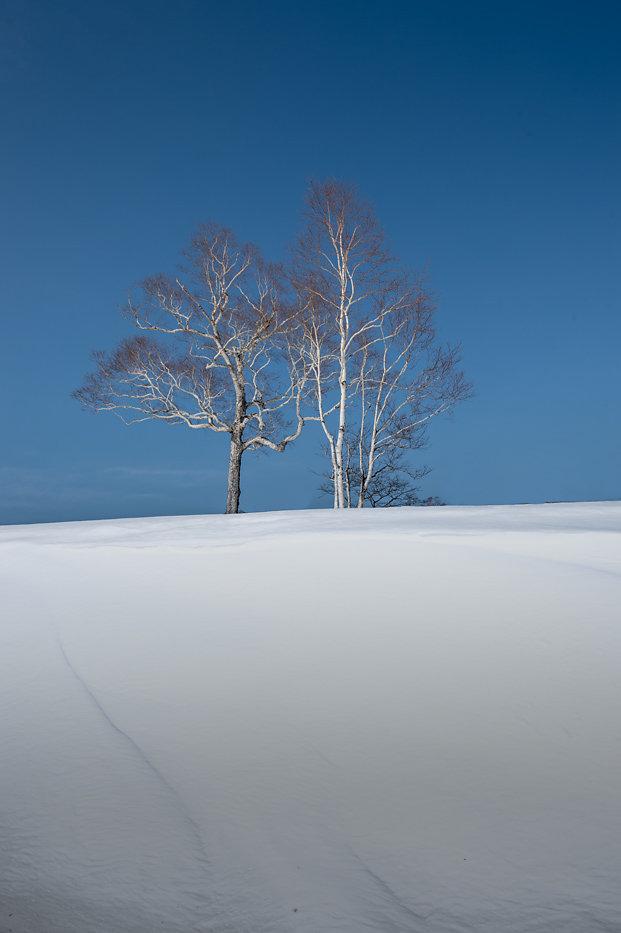 Hokkaido-04.jpg