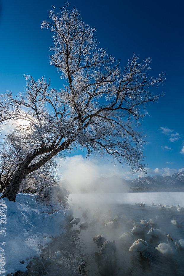 Hokkaido-36.jpg